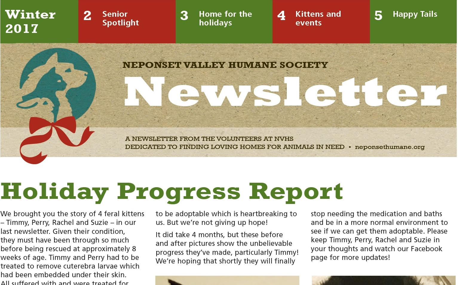 Newsletter picture 1